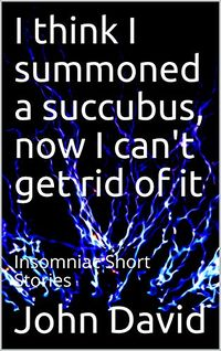 I think I summoned a succubus, now I can't get rid of it eBook Cover, written by John David