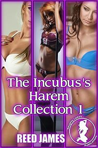 The Incubus's Harem Collection 1 eBook Cover, written by Reed James