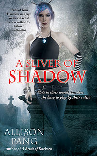 A Sliver of Shadow Book Cover, written by Allison Pang